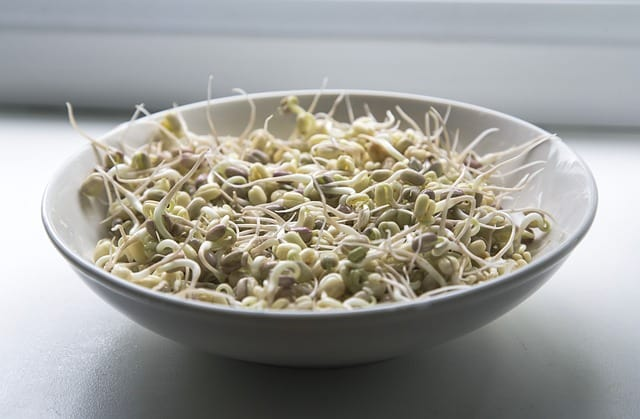 sprouts-1725589_640